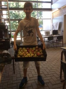 fruit-uit-eigen-tuin
